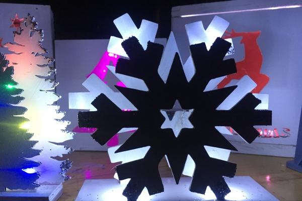snowflakeFA205466-C137-6FCE-3A56-322F9B66E21B.jpg